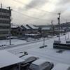 今日も雪⛄️
