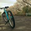 自転車に乗れる幸せ 【満開の桜の中を走る】