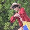 【USJ】夏イベントレポート その2『ワンピース・プレミア・サマー』編