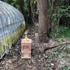 こまち農園 養蜂箱