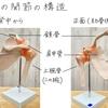 バレエノート(9)肩が上がらないようにするためのヒント1 〜肩の構造 テキストPDF印刷OK!