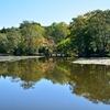 秋晴れの八郎沼で…