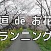 最高のお花見ランニングのために│岐阜県大垣市