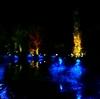 光のフェスタ in モネの庭2017