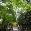 令和元年🌿下鴨神社参拝♪
