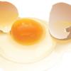 先日のアレルギー外来受診備忘録~みなさん生卵の負荷どうされていますか??~