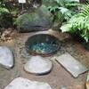明治神宮~小石川植物園~座禅会