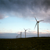 夕暮れの神栖市波崎の風力発電を写ルンですで撮る