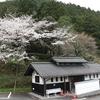 慎太郎生誕地桜が見頃です