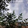 作曲工房 朝の天気 2017-09-15(金)雲の多い晴れ