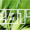 【2017年】「青梗菜(ちんげんさい)収穫量」ランキング