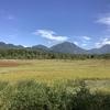【日光、女一人旅】華厳の滝、小田代原、刈込湖