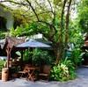 【バンコク】リゾート感溢れるレストラン♡