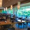 子連れ三木山森林公園の夏。じゃぶじゃぶ池とバイキングレストラン「デルパパ」