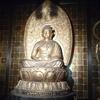 【埼玉】保寧寺(加須市)宗慶の阿弥陀三尊像