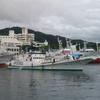 7月16日カツオ・マグロ水揚げ^^