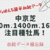 中京芝1200m,1400m1600m徹底攻略!注目種牡馬分析!