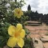 カンボジア旅行記4 - ロリュオス遺跡群