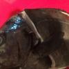フリースタイル魚の捌き方