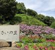 形原温泉・あじさい祭り~満開の色とりどりの紫陽花が美しすぎるスポット <愛知県・蒲郡市>