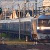 第1041列車 「 甲152 JR東日本 E261系(SR1+SR2編成)の甲種輸送を狙う 」
