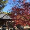 もみじ寺でおなじみ、犬山寂光院の紅葉を見に行く~2018年秋!