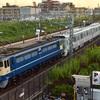 第1057列車 「 甲142 東京メトロ13000系(13142f)の甲種輸送を狙う 」