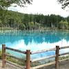 青い池は本当に青かった!【北海道美瑛町】