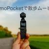 オズモポケットで散歩してみた/夏の夕焼け【Osmopocket/Osmo Pocket】