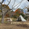 【キャンプ】千葉県の1日1組限定のキャンプ場へ行ってきました。紅葉と川がいい感じ。