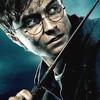 ハリー・ポッターの登場人物の杖を24人分ズラッと紹介!