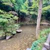 王子の池(鳥取県鳥取)