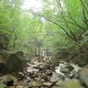 爪跡「くろんど園地20120814明け方の豪雨」・・・追記