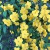 春の「脱・貧血宣言」