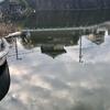 中池(和歌山県橋本)