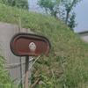 Photo No.258 / コーヒー豆のハンドピック