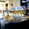 ブログを書き始めて9週間|PVと検索流入、そしてやったこと。