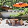 墓前祭に慎太郎生家で抹茶体験。