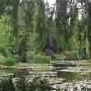 ⑦フランス☆ジベルニーといえば「クロード・モネ」睡蓮が咲いています