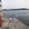 連日の釣行。