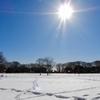 2018年1月25日 雪の後の公園