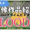 今観てほしいオススメアニメ !【BLOOD+】