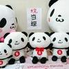 お買いものパンダ選抜総選挙 涙の壮行会の巻
