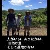 馬毛島通信ブログをはじめます!