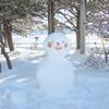 雪だるまつくったから、風邪ひきそう