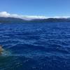 田沢湖ブルーの湖畔を走ってみました。(田沢湖高原温泉から角館、横手へ)
