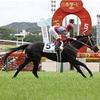 日本ダービー2021を過去傾向・注目馬・展開から予想