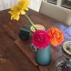 春の花たちが日々生長しています。
