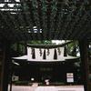 川越氷川神社で撮って来たんです