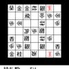 詰将棋迷路:問題19